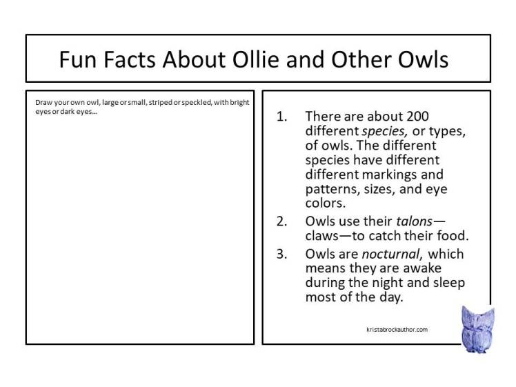Fun_Owl_Facts