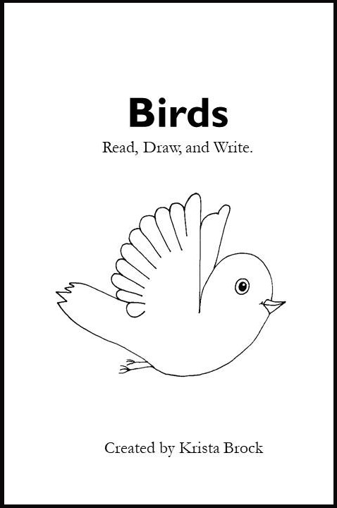 Read, Draw, Write Activity